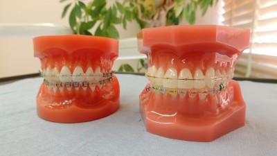 おがさわら歯科・のり矯正歯科