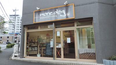 more dog(モアドッグ)